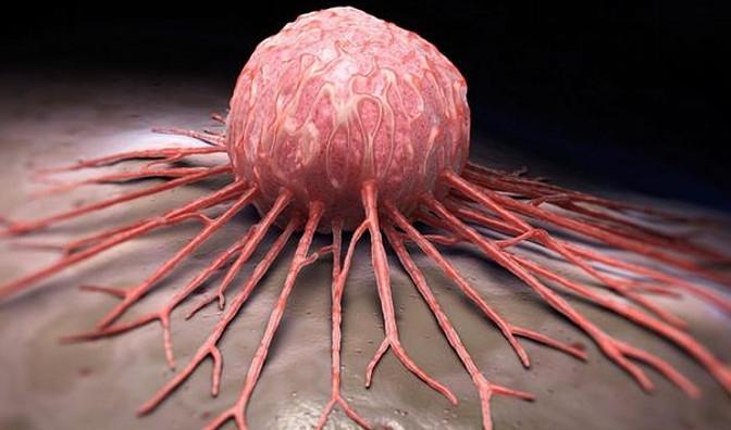 Ученые выяснили, почему раковые опухоли не поддаются лечению ➤ Главное.net