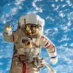 Почему у России нет достижений в космонавтике ➤ Главное.net
