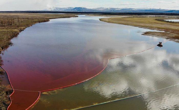 """""""Норникель"""" давно знал, что грядет экологическая катастрофа по их вине ➤ Главное.net"""