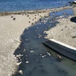 Пляжи Крыма заливают отходы из канализации ➤ Главное.net