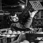 Армяно-азербайджанский конфликт потребовали оставить запределами России ➤ Главное.net