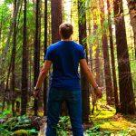 Три вещи, которые нельзя делать, если потерялся в лесу ➤ Главное.net
