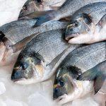 Россиянам назвали самую полезную рыбу ➤ Главное.net