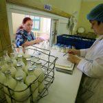 Этот укрепляющий иммунитет напиток был популярен в СССР: сейчас он актуален вновь ➤ Главное.net