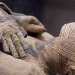 Ученые обнаружили необычный артефакт внутри египетской мумии ➤ Главное.net