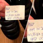 «Помогите, я в тюрьме»: тайное послание для россиянина в обувной коробке ➤ Главное.net