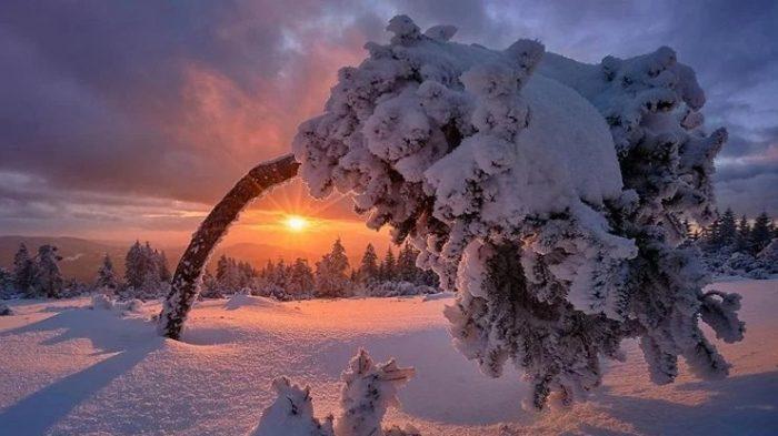21 декабря — День зимнего солнцестояния: факты которые вы не знали ➤ Главное.net