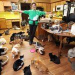 В РФ придумали формулу расчета предельного количества собак и кошек в квартире ➤ Главное.net